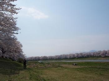 大河原5.jpg