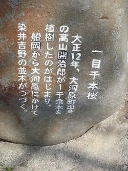 大河原7.jpg