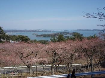 松島12.jpg
