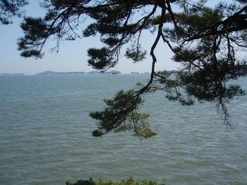 松島16.jpg